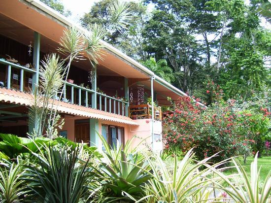 Buscar Um Parceiro Na Província De Costa Rica-3768