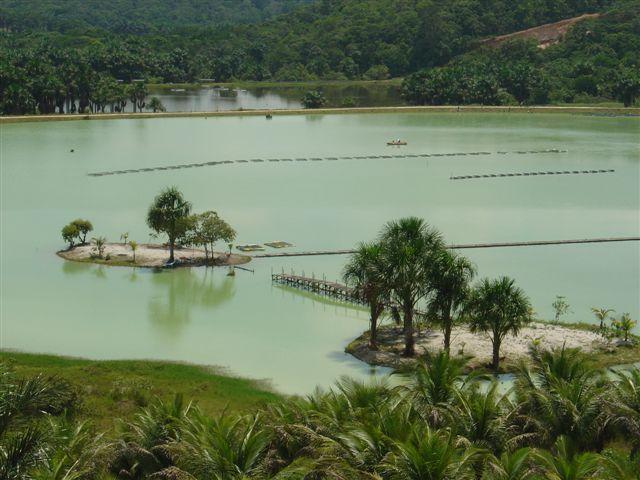 Contatos  San Isidro Manaus-6338