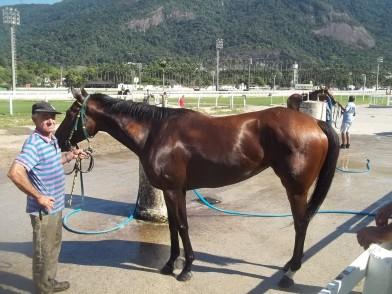 Namoro De Contato Bogota-7554