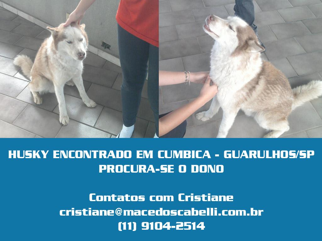 Se Procura Casal Em Guarulhos-263