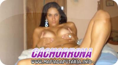 Reunião De Mulheres Em Amadora-2613
