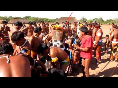 Procuro Mulheres De Para Amde São Félix Do Xingu-3929