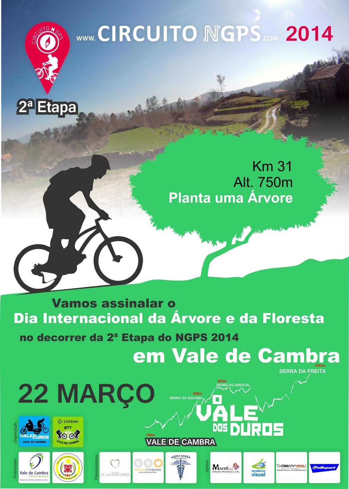 Mulheres No Anúncios Vale De Cambra-8659