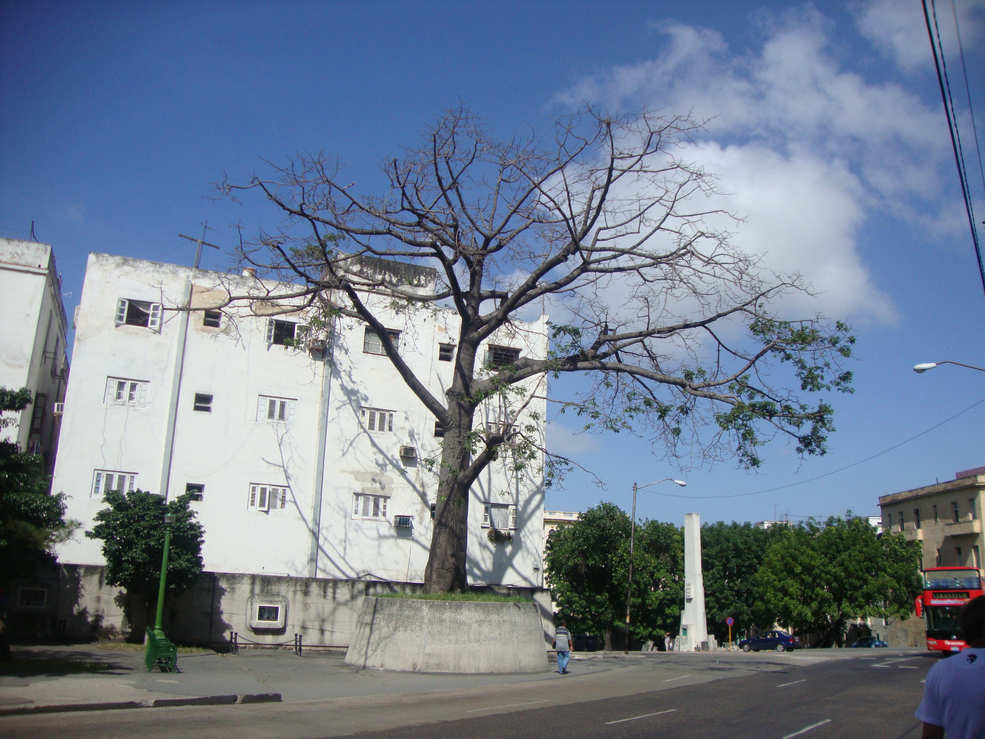Procurando Fotos Cuba-8620