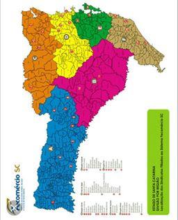 Procurando Norte Americano Campo Grande-7216